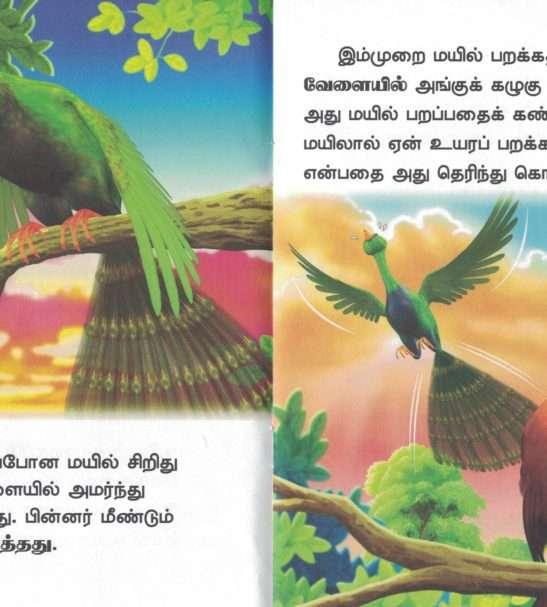 Parakka Ninaitha Mayil