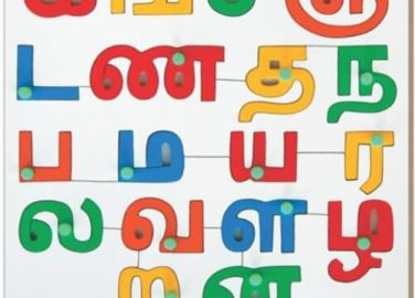 Tamil alphabets puzzle (consonants) wooden toy