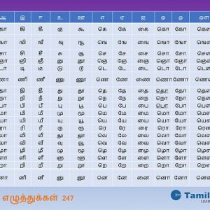 Tamil Alphabet Chart